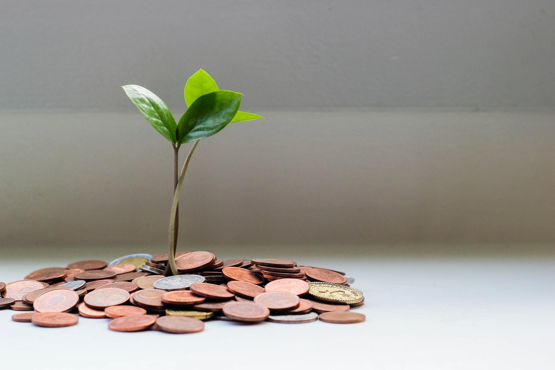 Разпределяне на месечния бюджет предварително – има ли ползи?